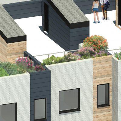 Roof Garden_The Mend